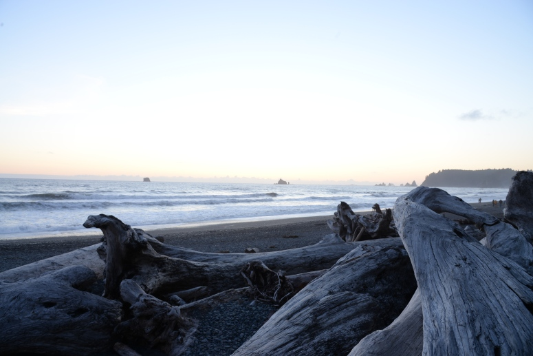 Rialto_Beach_Sunset_Driftwood_DNXB_Travel
