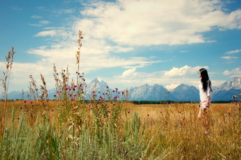 DNXB dongnanxibei Grand Teton Field Mountain View Flowers