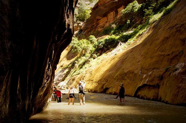 DNXB dongnanxibei Narrows Hike Sunlight River Zion National Park Utah