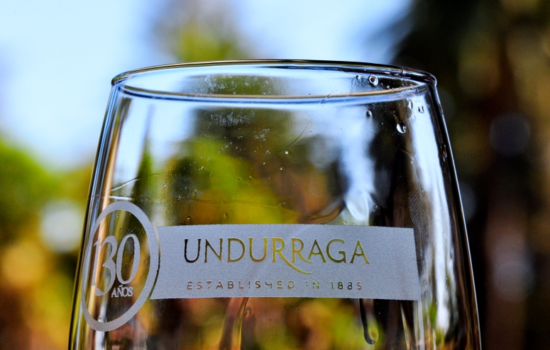 Undurraga Winery Maipo Valley Wine Chile Santiago Vineyard 90D Nikon DNXB dongnanxibei