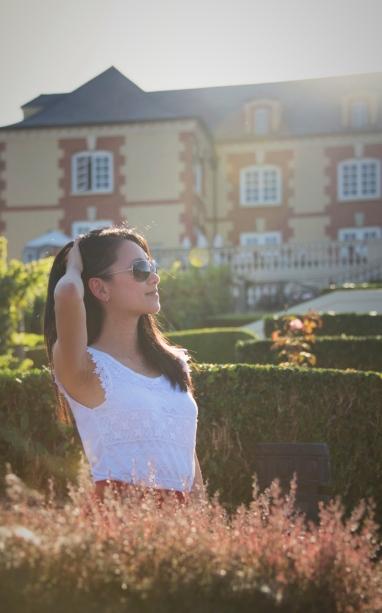 Warm sun hues at Domaine Carneros
