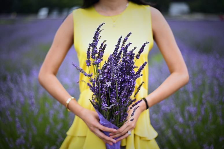 Yellow Dress Bouquet Lavender By The Bay North Fork Long Island Nikon Photography DNXB dongnanxibei