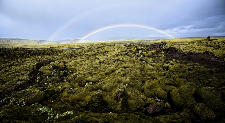 Eldhraun Lava Field Double Rainbow Moss Iceland DNXB dongnanxibei
