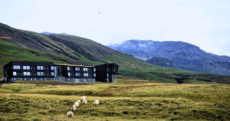 Fosshotel Glacier Lagoon Sheep Iceland Ring Road Jokulsarlon DNXB dongnanxibei